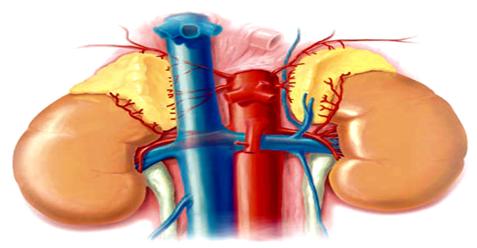 Χειρουργική επινεφριδίων